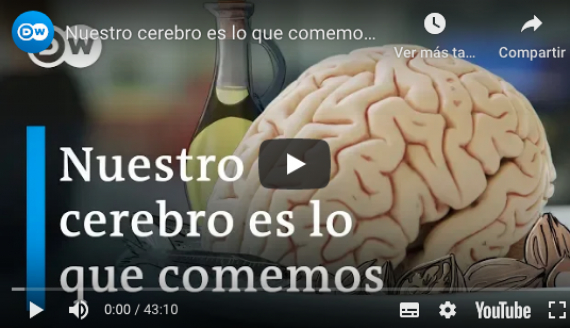 Video: Nuestro cerebro es lo que comemos | DW Documental